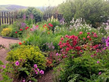 Open Gardens Ireland