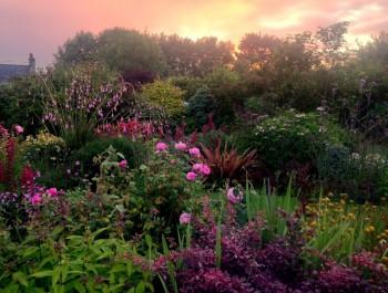 Gardens to Visit Ireland