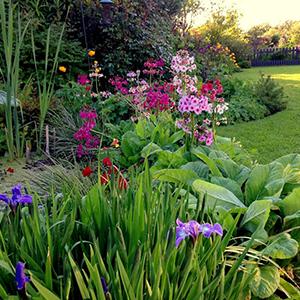 creative-gardening